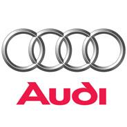 Audi Cylinder Liner