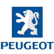 Peugeot Cylinder Liner